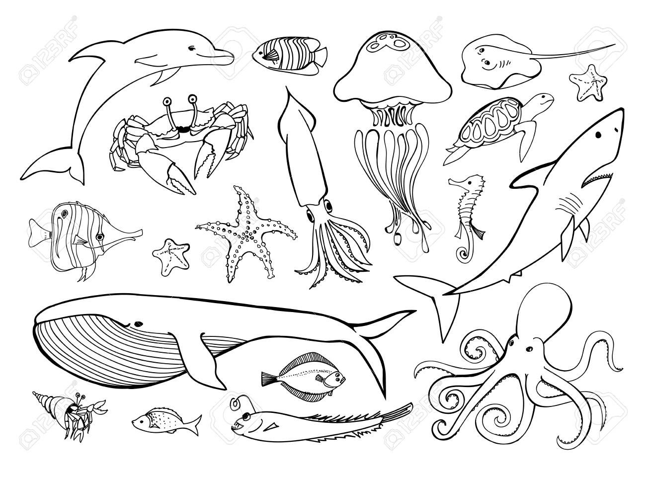 Sea Animals Line Icons Hand Drawn Set Doodle Ocean Life
