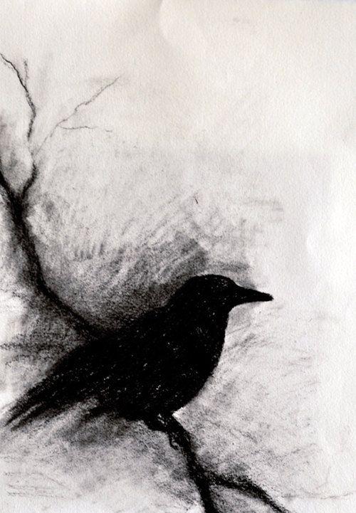 Original Charcoal Drawing Crow On A Branch Dark Halloween
