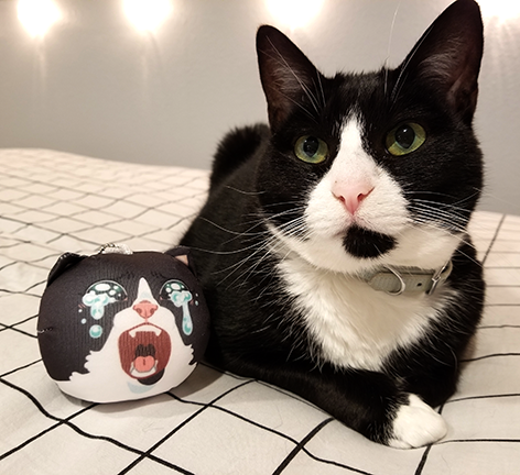 Inkky Crying Cat Manjuu Cats Indie Brands Free Online Store
