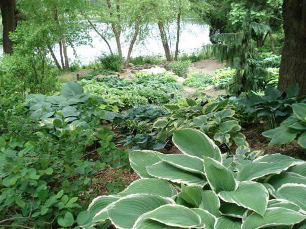 8ba349847807bb12e76e7dfdcf350369 - Hidden Lake Gardens In Tipton Michigan