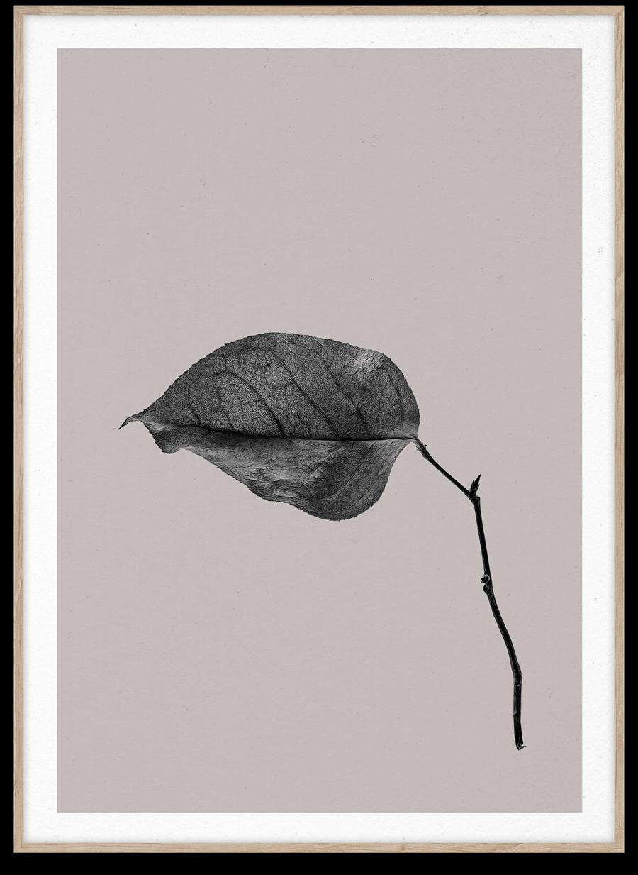 Premium Poster für einen guten Zweck. Sabi Leaf 03 Poster von Norm Architects. www.paintthings.de