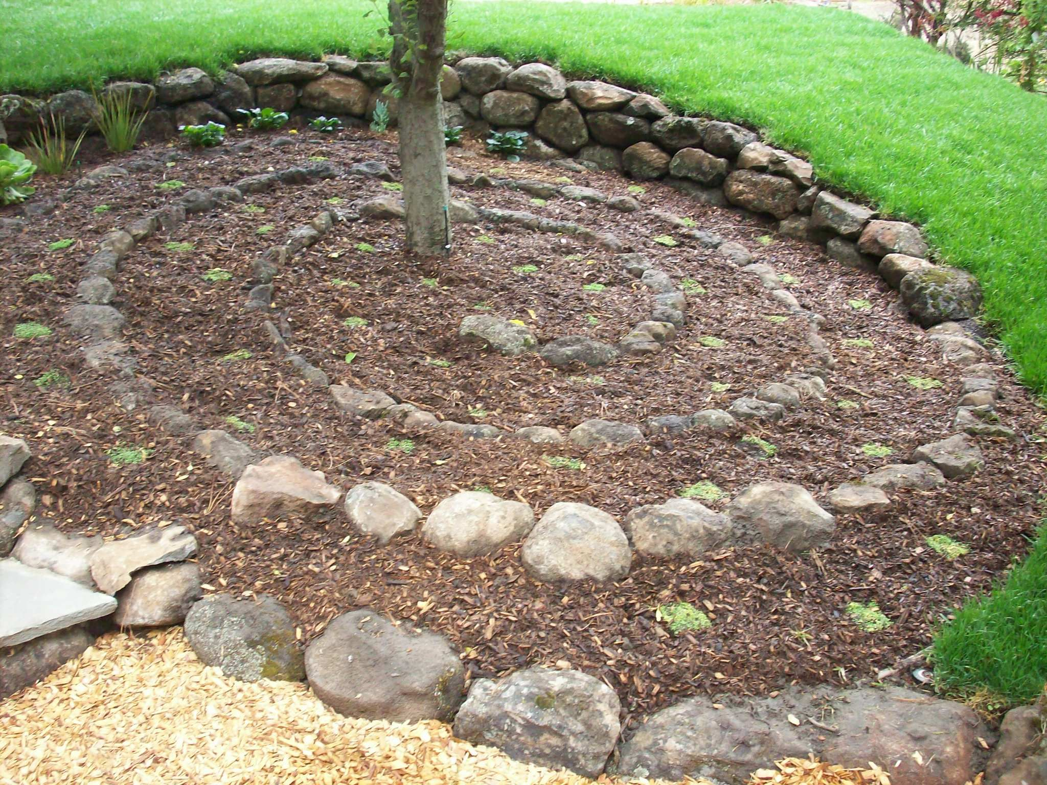 Rock Garden Under Tree Google Search Under Tree Garden Ideas