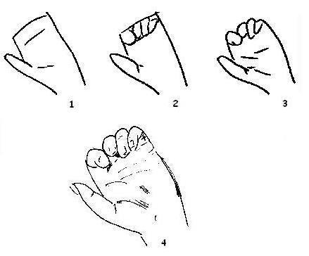 hand - stap voor stap tekenen, voorbeeld, leren | creative - how to