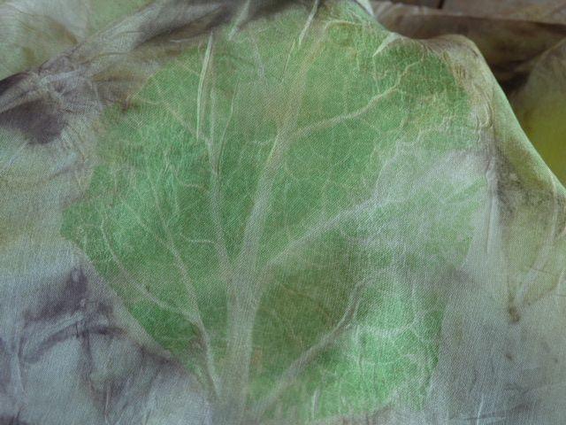 clary sage leaf - Wendi of the Treasure
