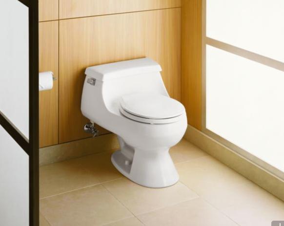 Best Small Toilets Toto Kohler Duravit 3 More Small Toilet Toilet One Piece Toilets
