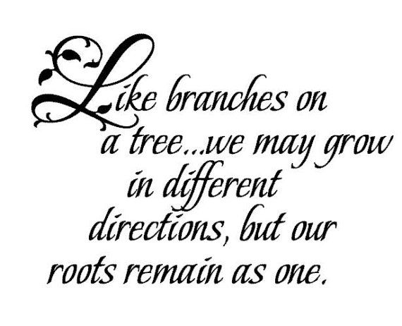Like Branches On A Tree Quote: Like Branches On A Tree...we May Grow In Different
