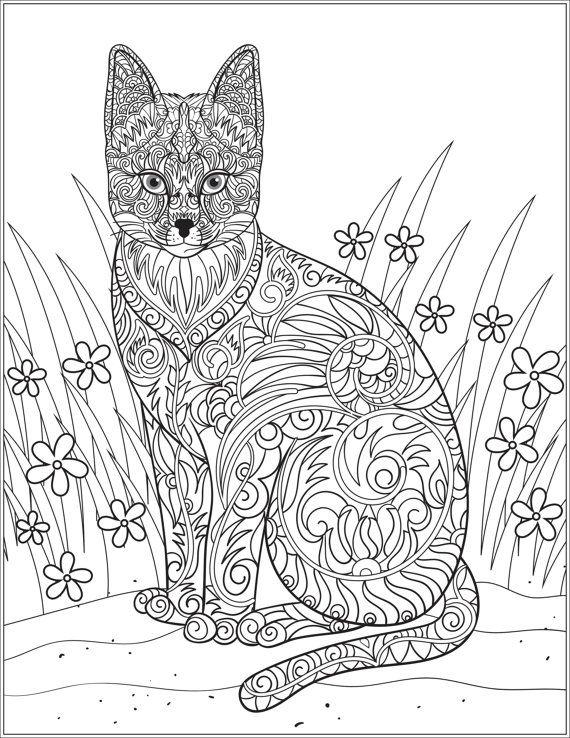 договоренности, картинки для раскрашивания кошки релакс поговорим