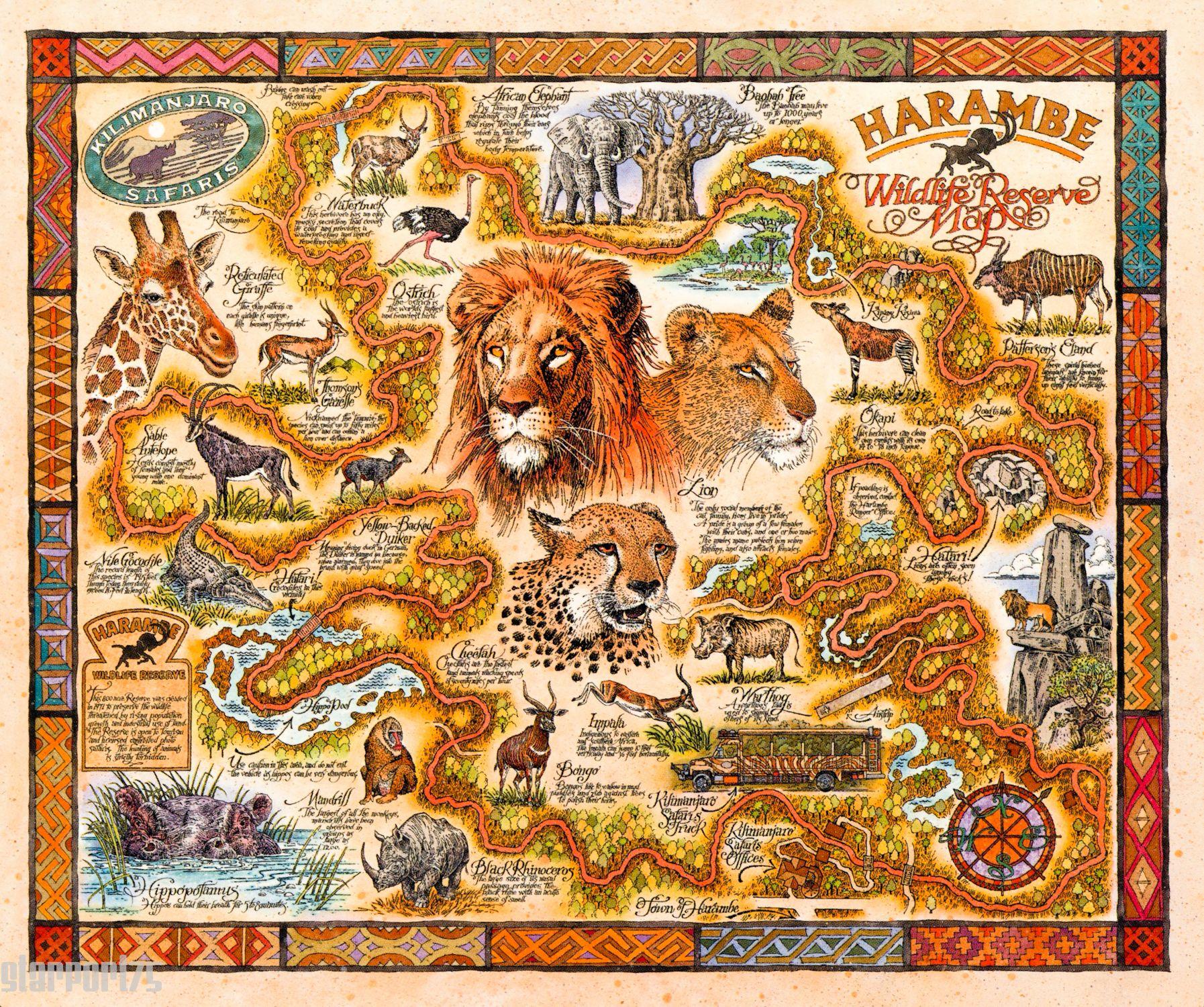 Animal Kingdom Animal Kingdom Disney Disney Rides Disney Map