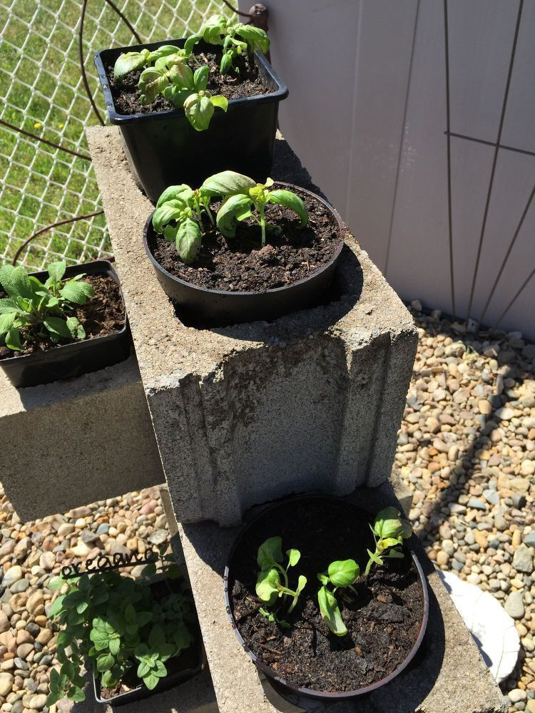 Cinder Block Herb Garden Creative, Lovely, and Clever ! DIY Cinder Block Herb Garden! #betonblockgarten #creative #cinder #garden #lovely #clever #cinder #garden #block #block #herb #herb #and #diyCinder Block Herb Garden Creative, Lovely,  and Clever ! DIY Cinder Block Herb Garden!Creative, Lovely,  and Clever ! DIY Cinder Block Herb Garden! #betonblockgarten Cinder Block Herb Garden Creative, Lovely, and Clever ! DIY Cinder Block Herb Garden! #betonblockgarten #creative #cinder #garden #lovely #betonblockgarten