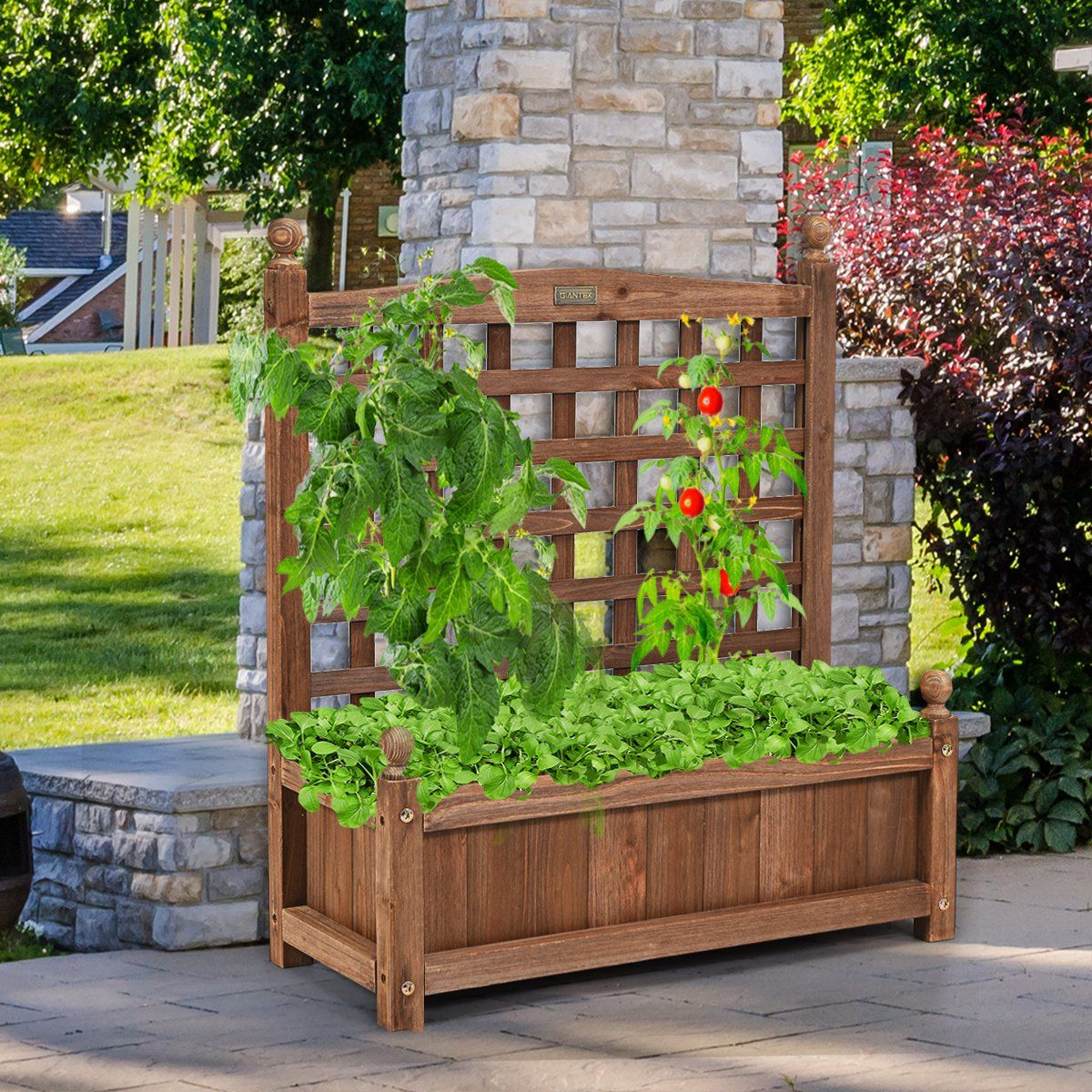 Costway solid wood planter box with trellis weather