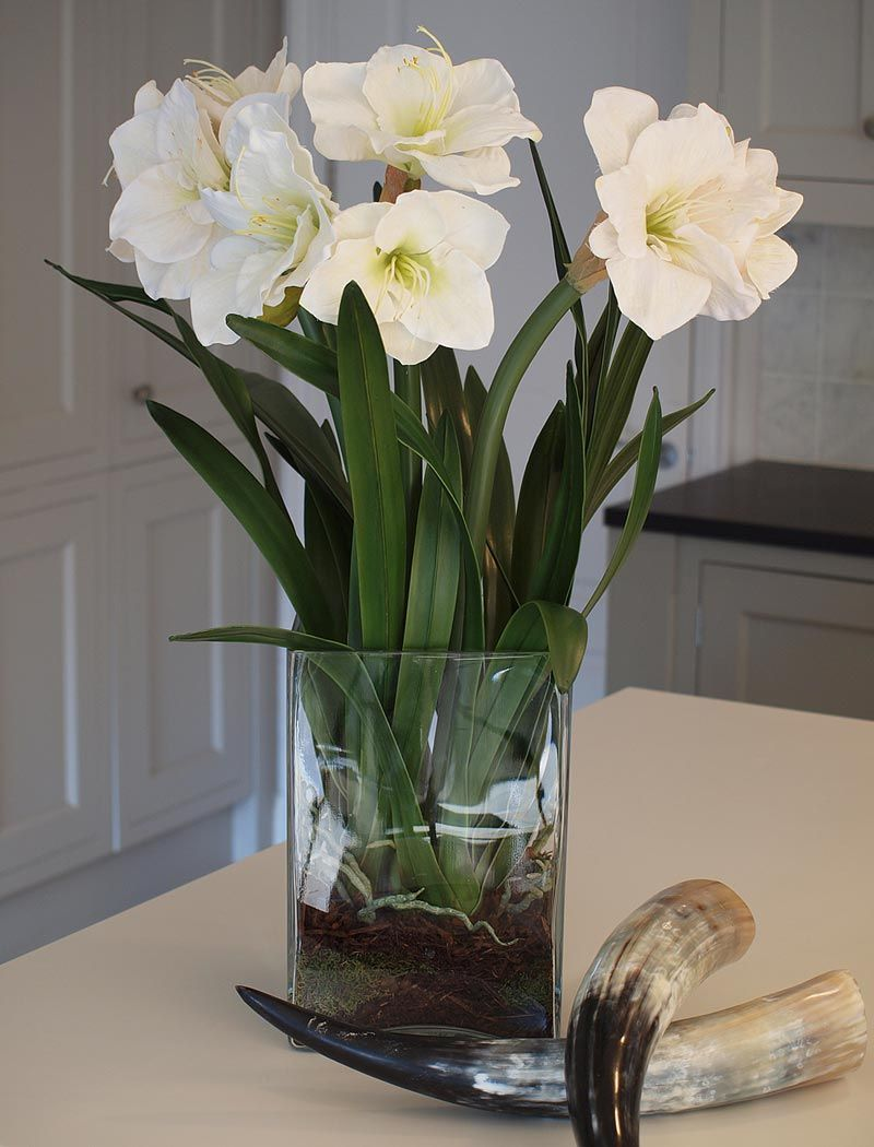 Amaryllis In Tall Glass Cube White Rtfact Artificial Silk