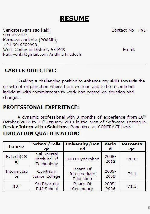 customer service cv sample template example of excellent curriculum