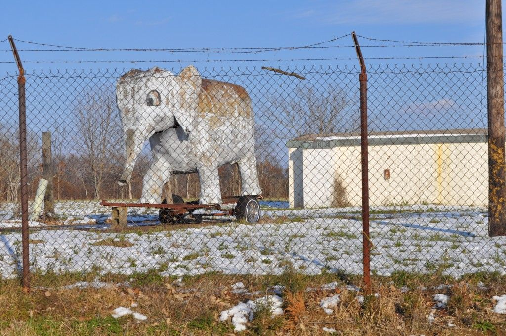 An oddity spotted on the way to Indiana's Amish country....