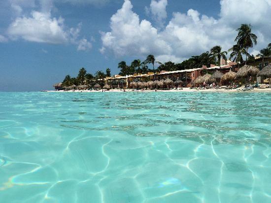 Aruba All Inclusive >> Tamarijn Aruba All Inclusive Aruba All Inclusive Aruba