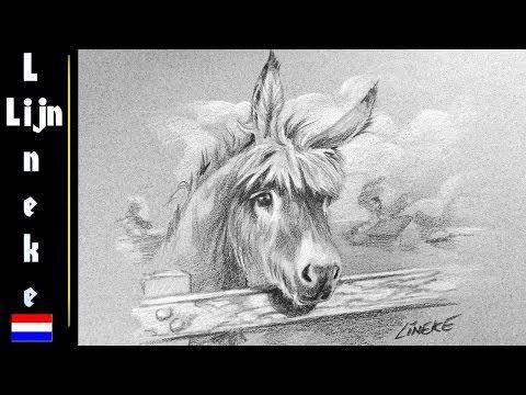 landschap en ezel tekenen potlood voor beginners - youtube | leer