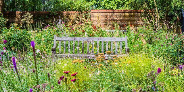 hydrangea garden care #gardencare 6 genius tricks to make your hydrangea last much longer - English Garden with wooden bench and wildflowers - #containergardening #cottagegardens #englishgardens #genius #hydrangea #longer #smallgardens #tricks