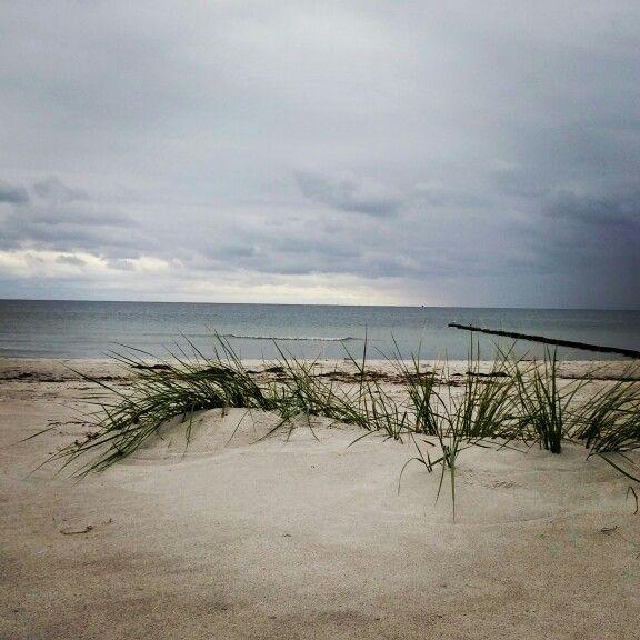 Der Strand von Hiddensee