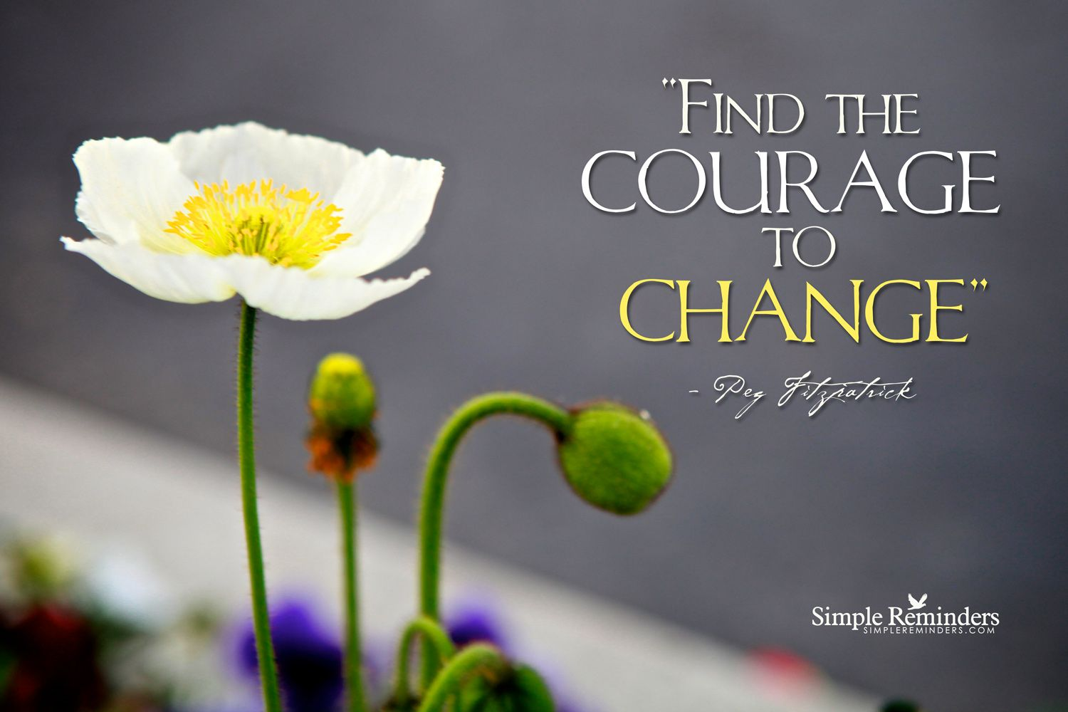 Let Courage to be Your Friend. ~Peg Fitzpatrick  #motivation #change #courage #flowers #empowerment  @SIMPLE Comunicación Reminders