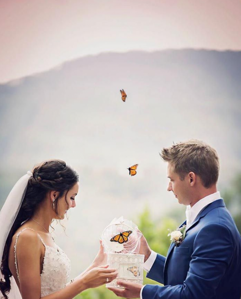 The End Of Your Ceremony Wedding Butterfly Release