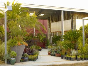 Beautiful nursery and garden store with Ritual coffee shop inside