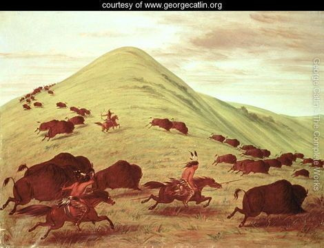 Sioux Indians Hunting Buffalo 1835 George Catlin