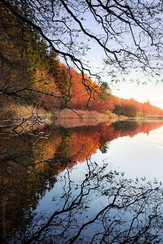 Autumn Poetry By Stefan Hefele 500px Autumn Poetry Beautiful Nature Nature Photography
