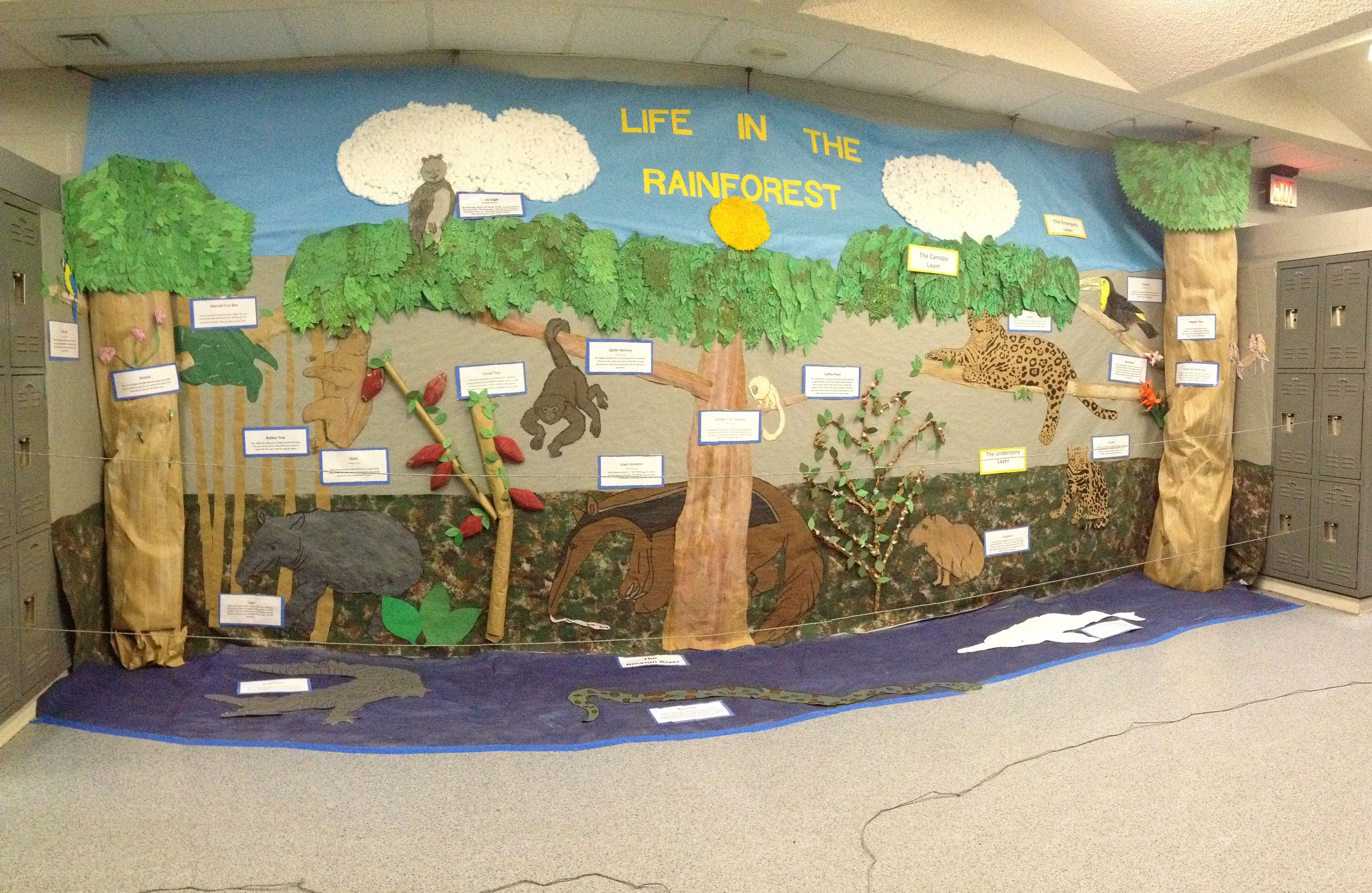 Amazon Rainforest Display Which Was Part Of A Thematic