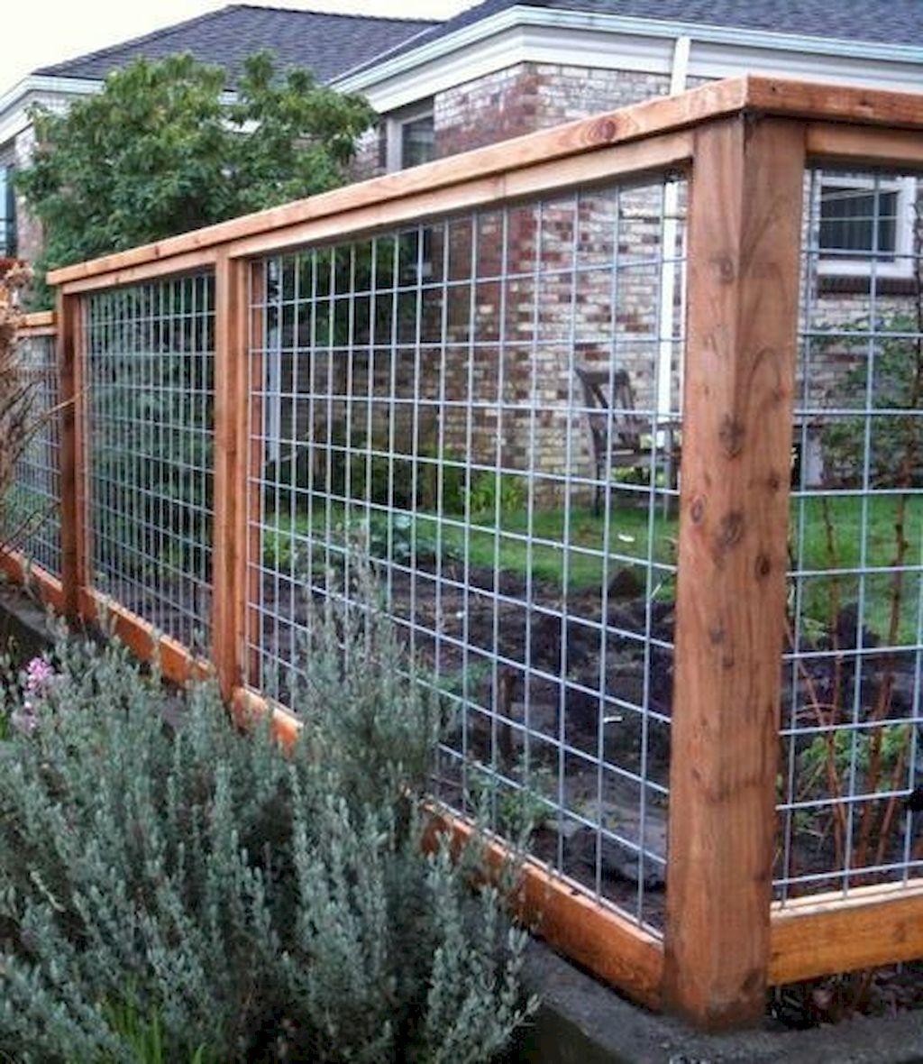 Cheap Garden Fences: Easy Cheap Backyard Privacy Fence Design Ideas 02 In 2019