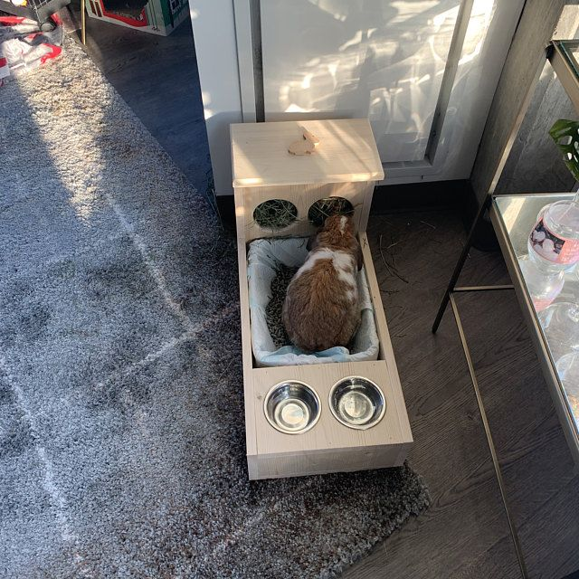 Rabbit Hay Feeder With Litter Box Food and Water bowls