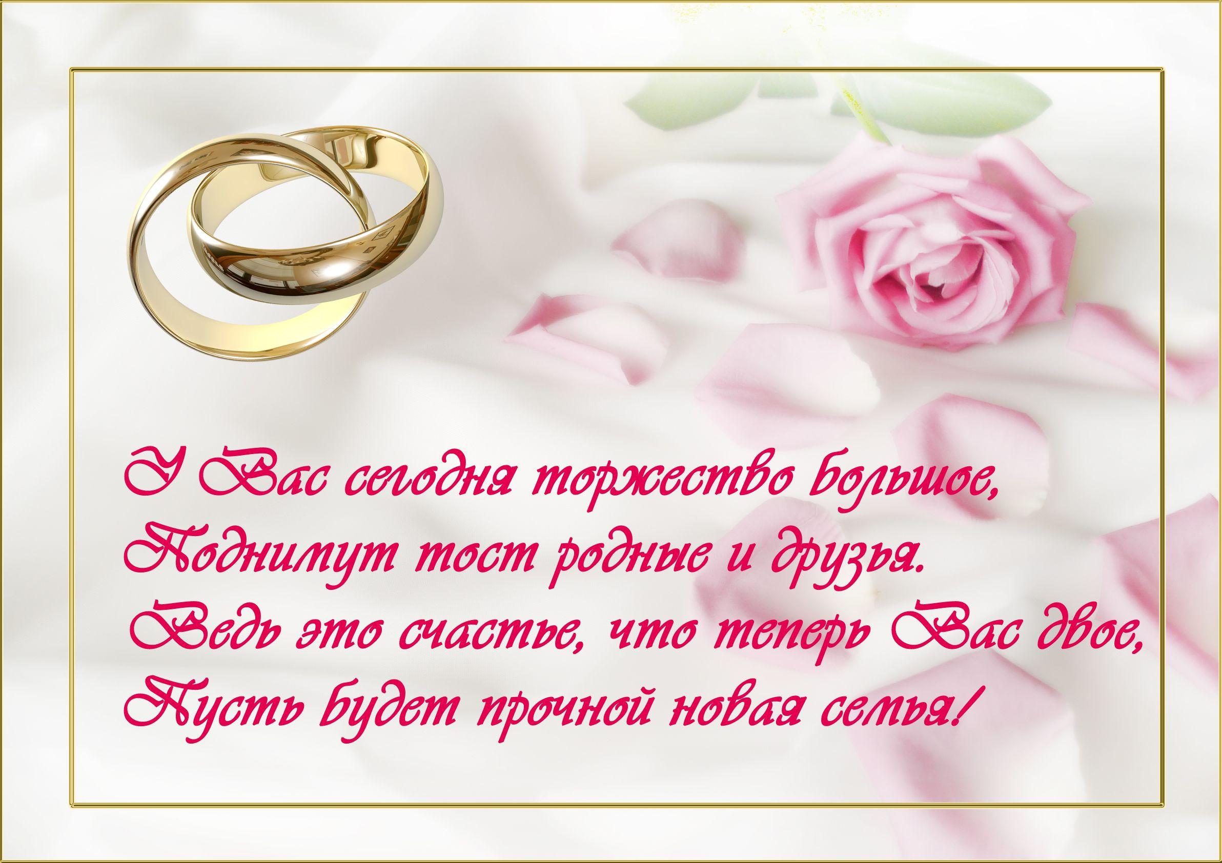 Красивые поздравления молодоженам в день свадьбы в стихах