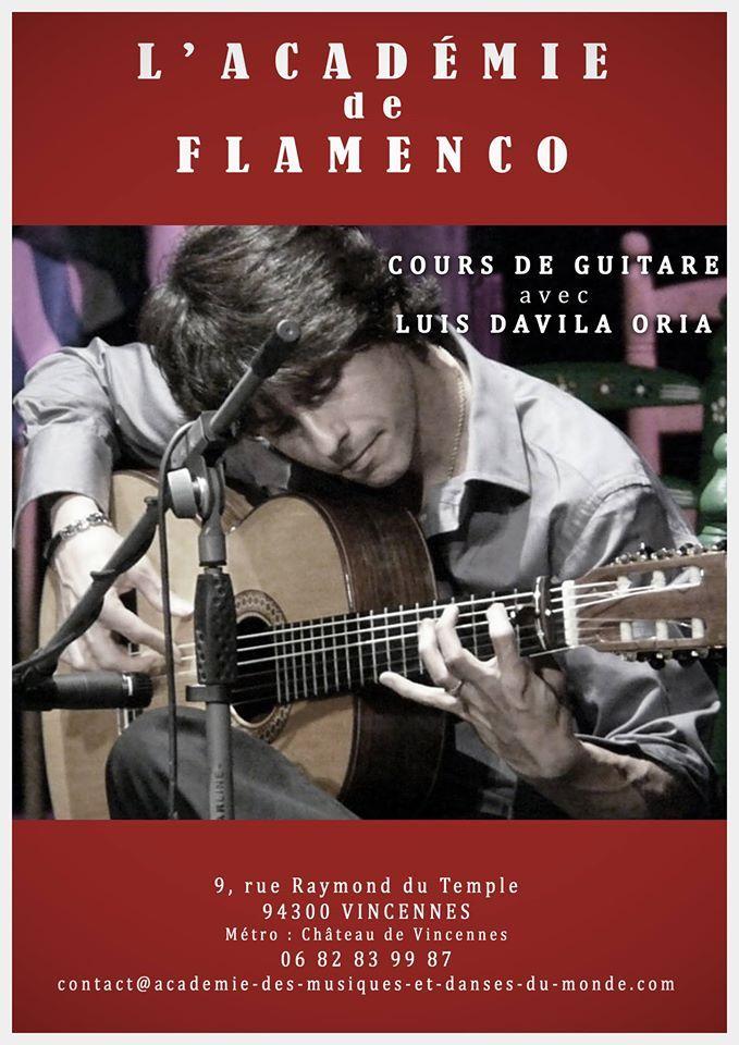 Fundación Guitarra Flamenca Www Fundacionguitarraflamenca Com Clases En Linea Cursillo Escuela