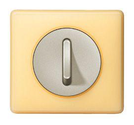 Interrupteur Legrand Silencieux Pamplemousse Interrupteur Legrand Interrupteurs Prise De Courant