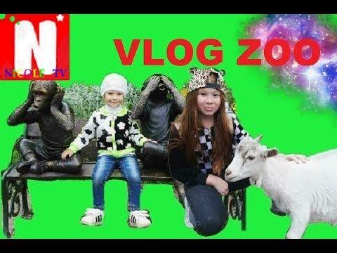ВЛОГ!!! Зоопарк,видео для детей.Николь кормит животных!Vlog! Zoo, video ...