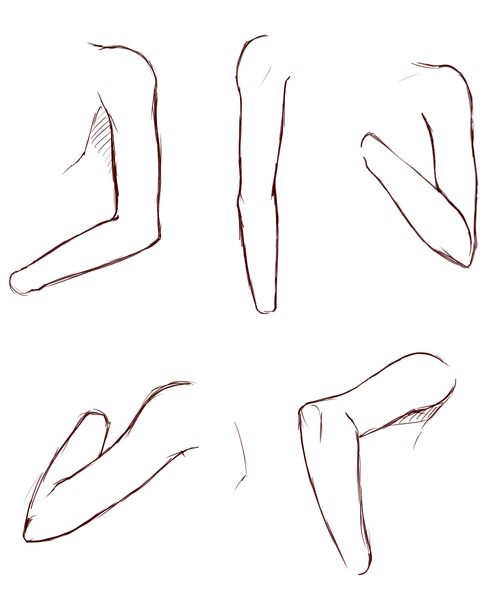 How To Draw Arms Reference Arm Drawing Drawing Tips Anatomy Drawing