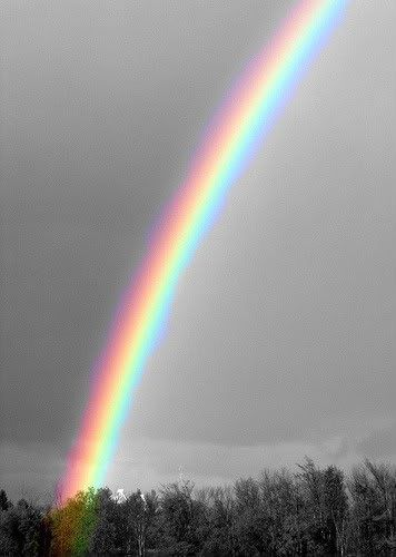 I like this picture because I am a very imaginative person. I like having fantasies of living in a happy world with unicorns, rainbows and butterflies everywhere. I also like this picture because my craziest dream would have to be being able to slide down a rainbow.