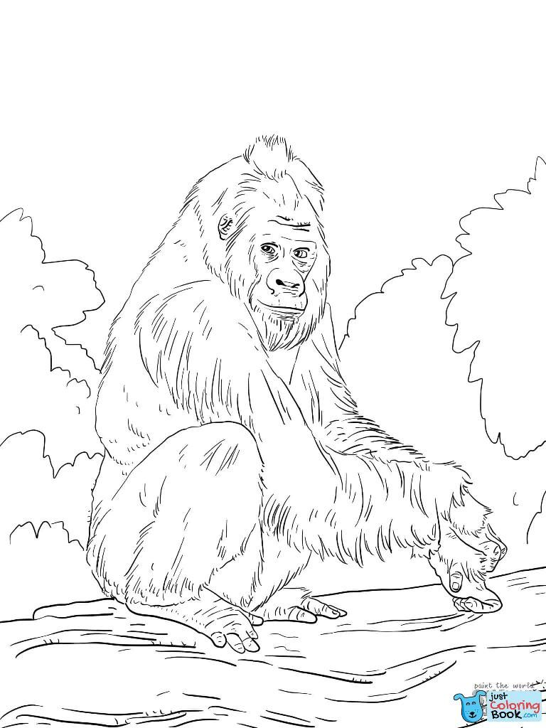 Gorilla Coloring Pages Beautiful Western Lowland Gorilla Coloring Intended For Western Lowla Coloring Pages Animal Coloring Pages Free Printable Coloring Pages