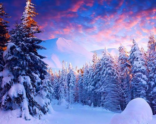 farben der romantik winter landschaften winter schnee. Black Bedroom Furniture Sets. Home Design Ideas