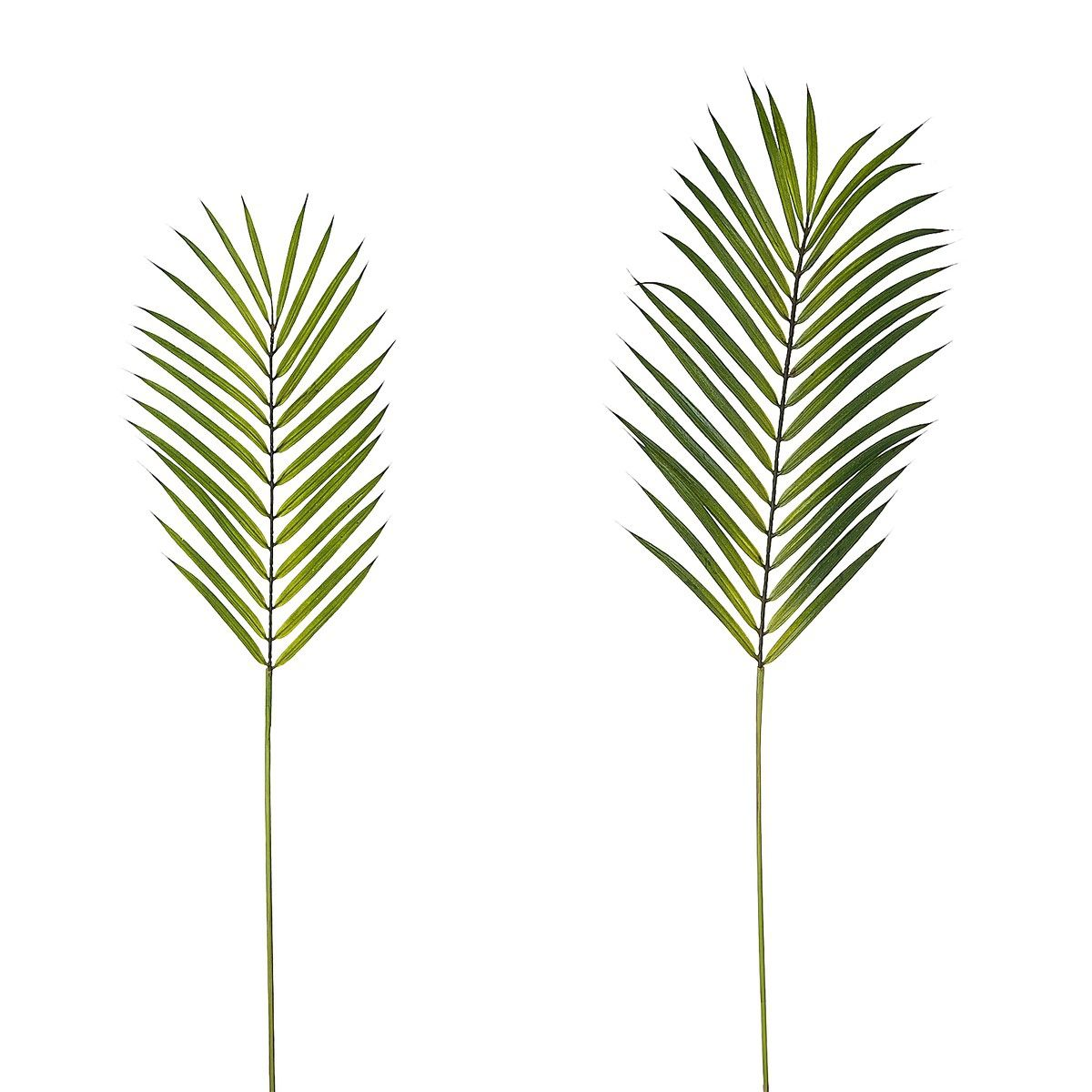 Feuilles de palmier sia d co objets accessoires pinterest feuilles de palmiers - Palmier hawaien feuilles jaunes ...