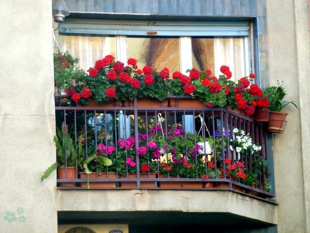 balcón con flores | deco | pinterest | balcones, propios y el balcon
