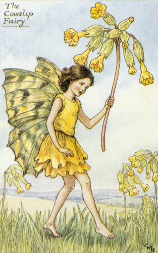 cowslip flower fairy... I loved my Flower Fairie book when I was a child...