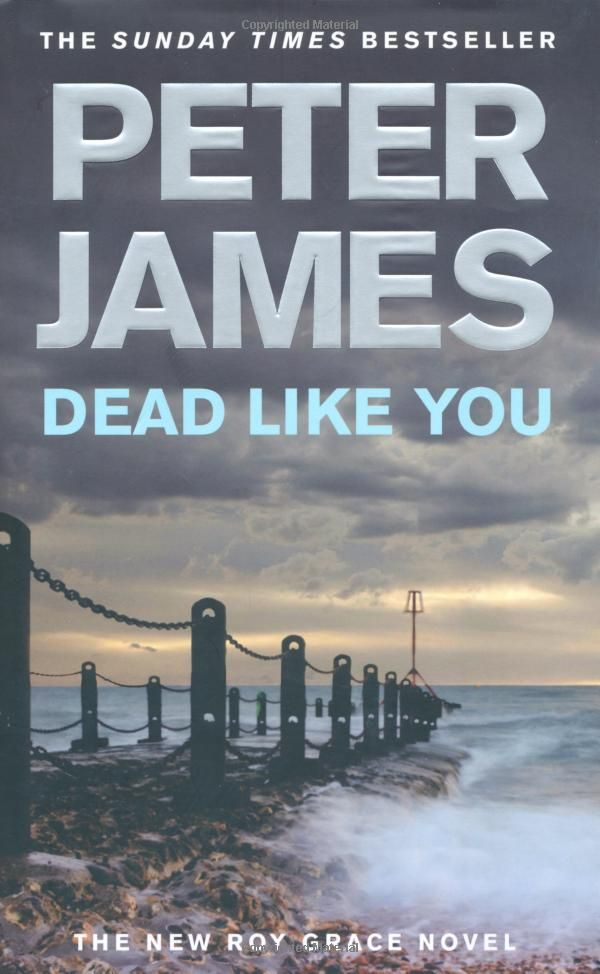 Dead Like You Peter James 6th Roy Grace Novel Buy It Http Astore Amazon Co Uk Spanisimpres 21 Detail 1447272668 James Dead Books Music Book