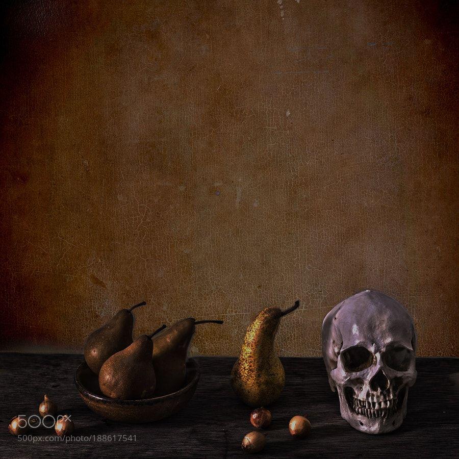 Vaniras Skull and pears by DirkNoort