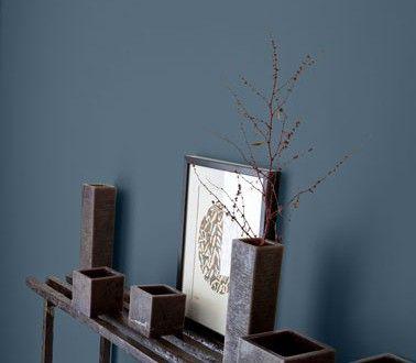 Couleur peinture entrée bleu intense gris anthracite Salons