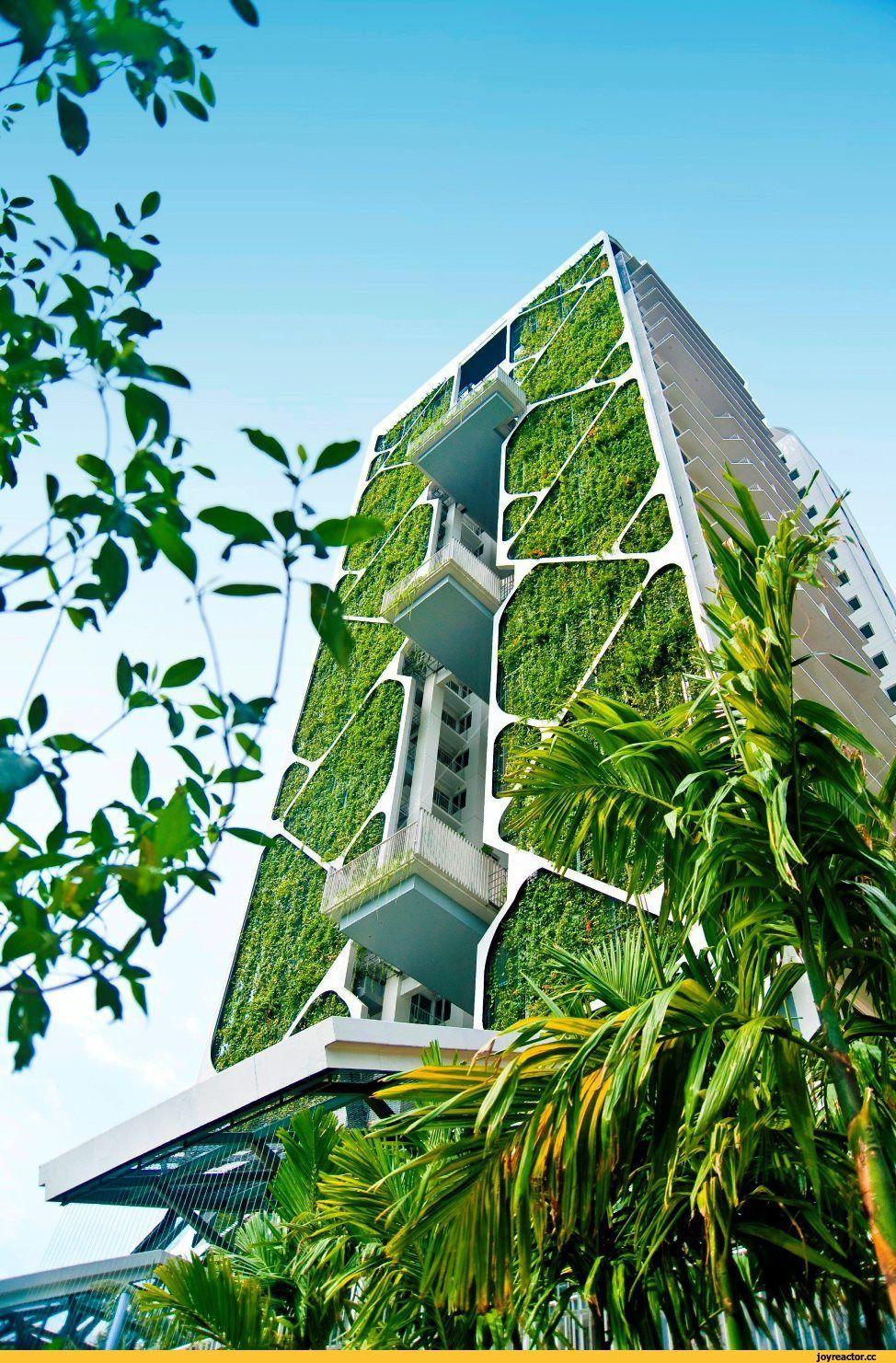 Olka nevka pinterest architecture immeuble - Immeuble vegetal ...