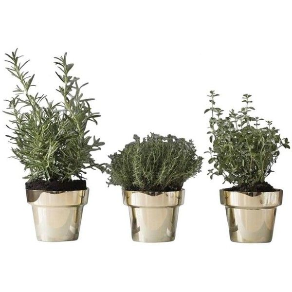 Three Skultuna Herb Pots, Design By Monica Forster, Swedish Design ...