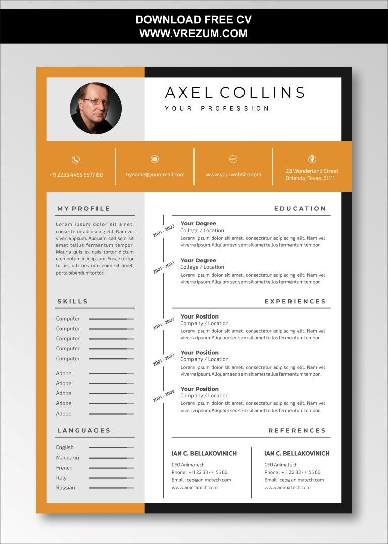 (EDITABLE) FREE CV Templates For Business Development