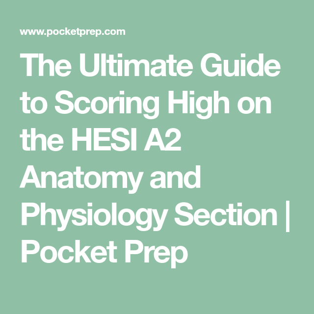 The Ultimate Guide to Scoring High on the HESI A2 Anatomy and ...
