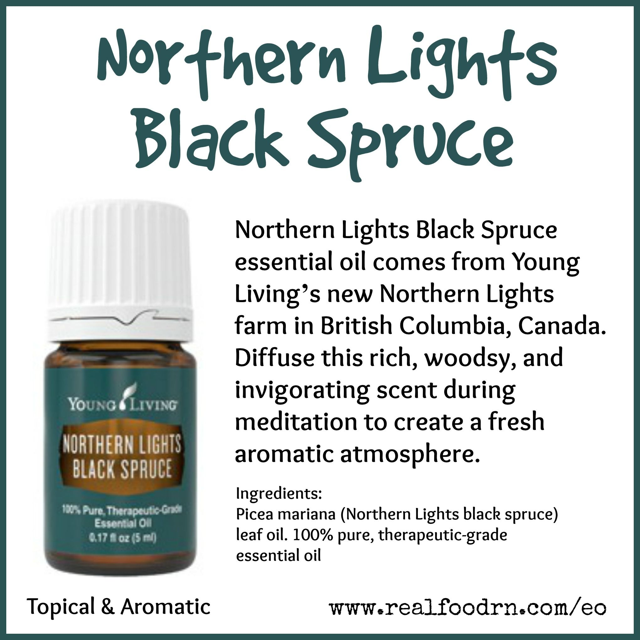Northern Lights Black Spruce Essential Oil Essential