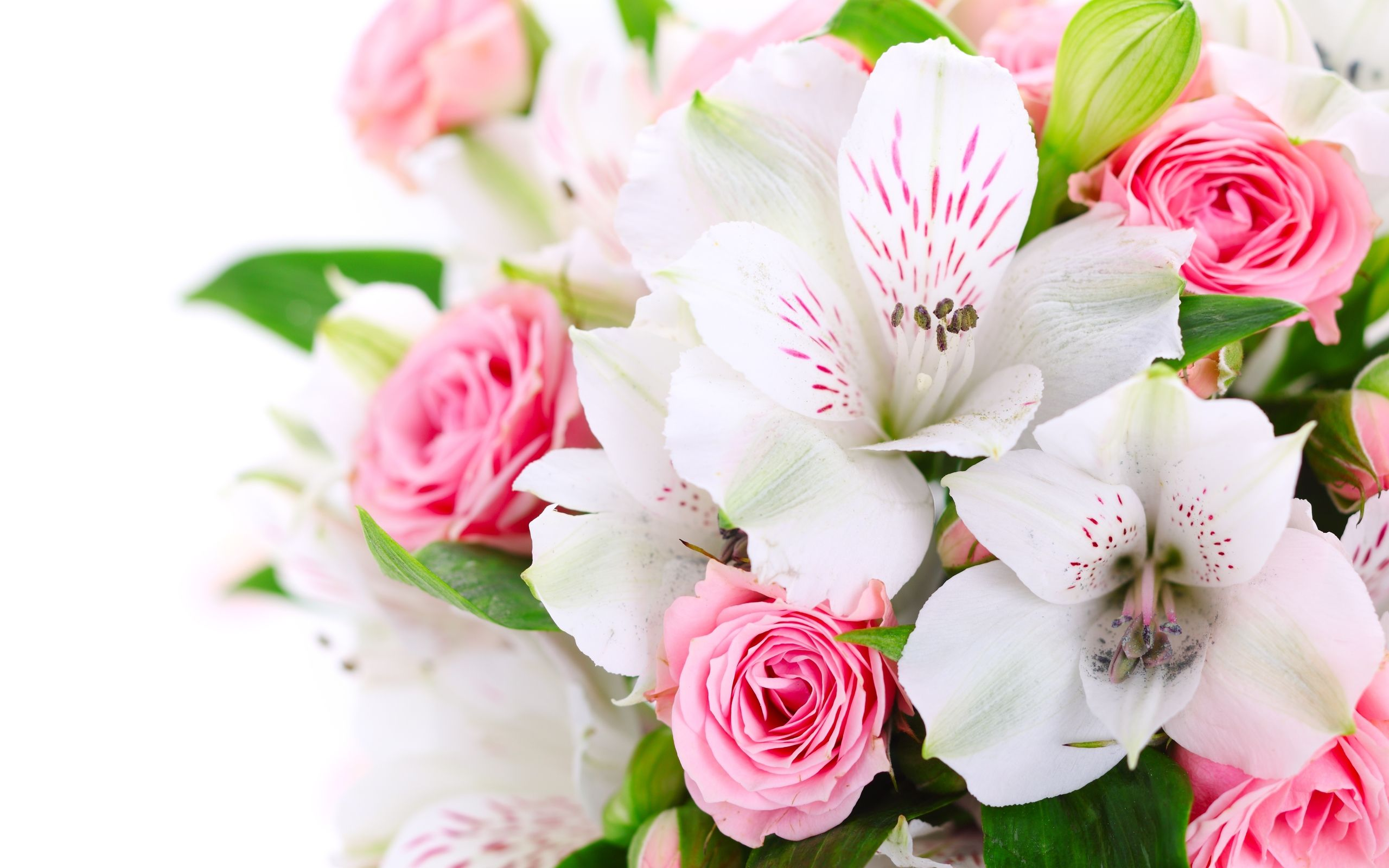 Pink Rose X White Orchid Bouquet Beautiful Flowers Pictures Beautiful Flowers Images Beautiful Flowers