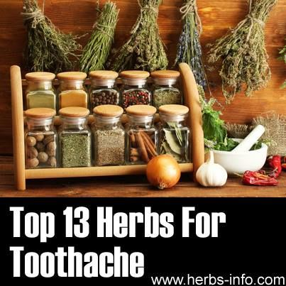 13 herbs for toothache